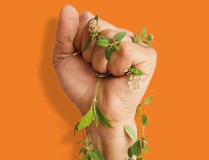 Les Mimut Santé : Fabriquons un produit multiusage économique et écologique